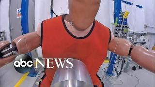 هيئة السلامة الأمريكية تقدّم دمى إصطدام سمينة لإختباراتها بسبب تزايد السمنة المفطرة حول العالم