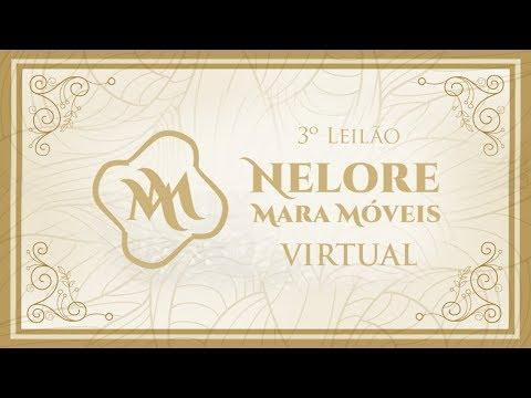Lote 11 (Ilustre FIV Mara Móveis - MARA 1129)