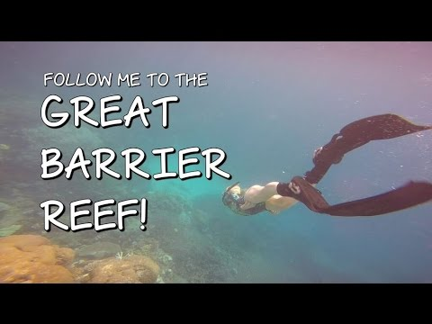 FOLLOW ME TO THE GREAT BARRIER REEF!!  CoralReefer Down Under
