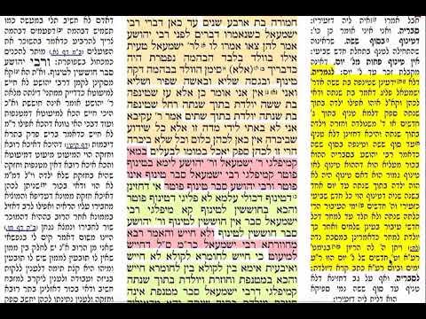 בכורות כ 20 שלישי ב׳ אייר תשע״ט בכורות דף כ׳ שמואל נבון ירושלים. Daf yomi Bechorot daf 20 Bechoros