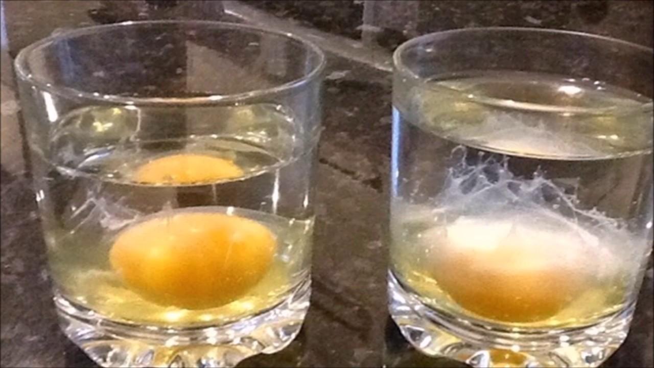 Gu a r pida para interpretar la limpia con huevo youtube - Como deshacer un mal de ojo ...
