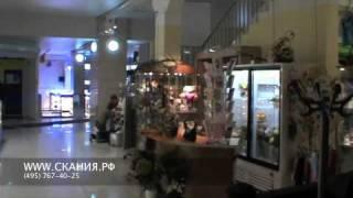 видео рестораны на павелецкой