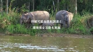 サラヤ水といきもののために。Happy Elephant