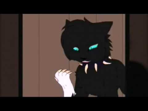 Коты воители бич 1 серия