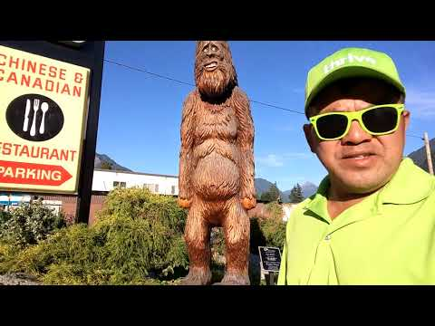 the-tourist-attraction-hope-british-columbia-canada-wood-carving