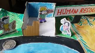 B.Ed मानव संसाधन पर मॉडल//Education exhibition, working model by B.Ed  student, model