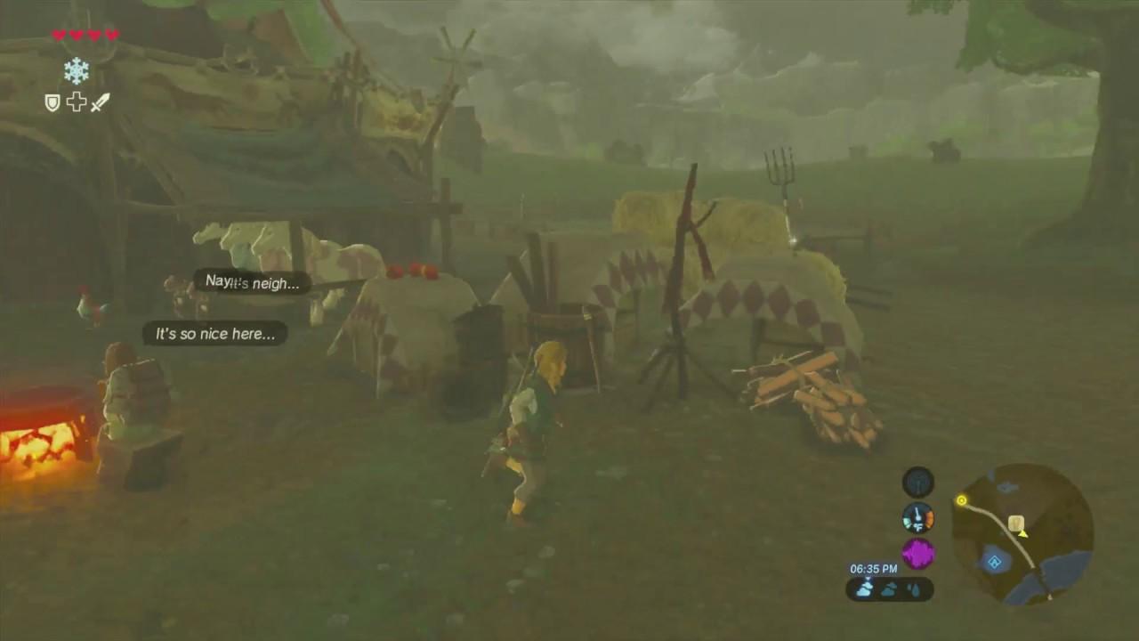 Zelda: Breath of the Wild Framerate Issues (Wii U)