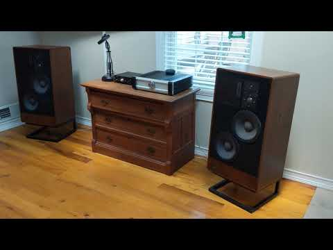 ADS 910 Speakers with Musical Fidelity A5 Integrated Amp