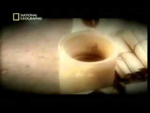 [Hindi] Nat-Geo Documentary Turin Shroud - An evidence of Jesus Surviving Crucifixion