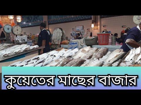 Fish Market In Kuwait.