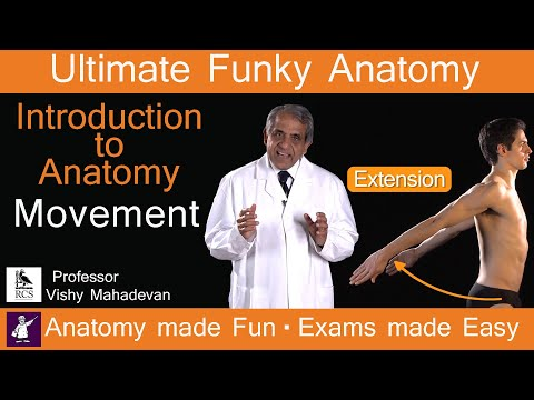 Introduction to Anatomy Movement. Anatomy made Fun. Exams made Easy!