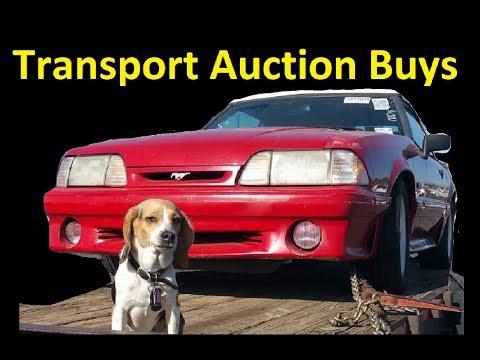 Auction Transport Video Load & Unload Cars ~ Car Hauling w/ Breeder