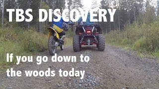 TBS Discovery - If you go down to the woods today