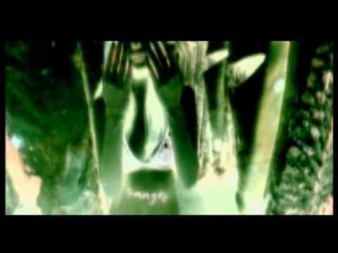 Клип Delirium - Silence