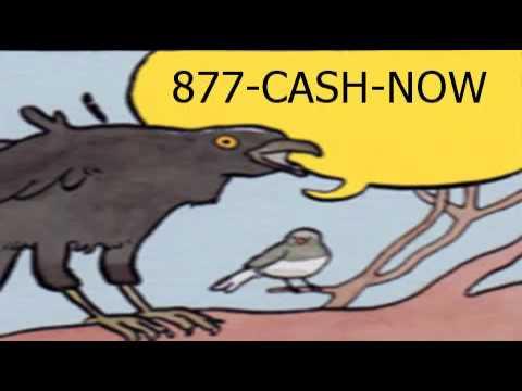 jg wentworth bird meme annoyed bird know your meme
