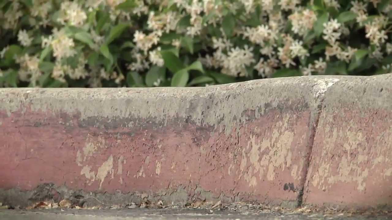 Nike Skateboarding: Roots In Boardfeel with Stefan Janoski and Alex Olson -  YouTube