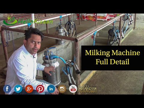 मिल्किंग मशीन खरीदते समय क्या धयान रखे ?? || Milking Machine Details || Hello Kisaan