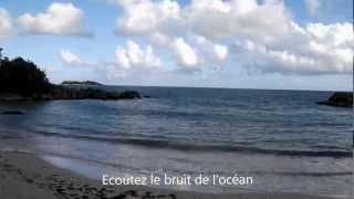 West indies Patrick Saint Eloi, la Guadeloupe en image ( Perle de Conque)