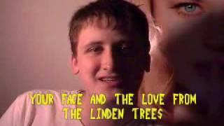 Dragostea Din Tei: The Translation