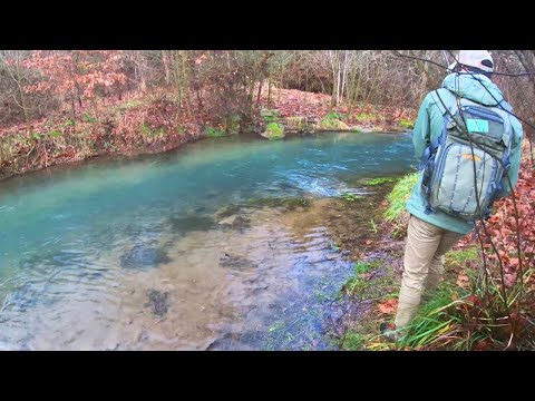 Trout Fishing In The Winter - Beaver Creek, VA
