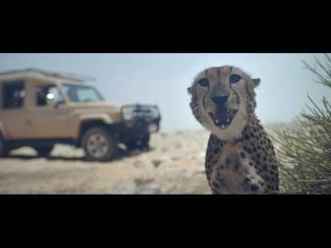 Abu Dhabi TCA 'Your Extraordinary Story' (M&C SAATCHI UAE, 2016)
