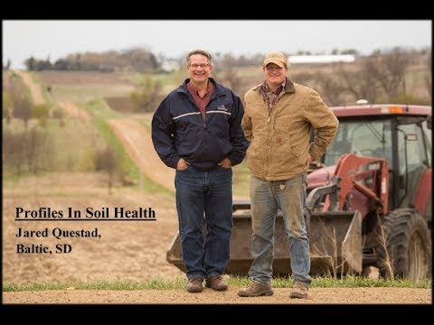 """South Dakota Soil Story: """"Transitioning To No-Till"""" With Jared Questad, Baltic, SD"""