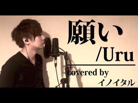 【男が歌う】願い/Uru アニメ「グランベルム」エンディングテーマ By イノイタル(ITARU INO)歌詞付きフル