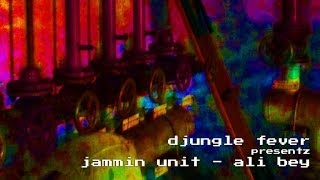 Jammin Unit - Ali Bey (Djungle Fever / Liquid Sky Berlin)