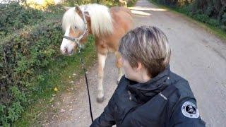 Vlog n°6 : Maréchal