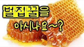 ♣ 벌집꿀을 아시나요~ ? 김덕곤 자연 벌집꿀 생산지를 가다~~!! Honey~Honey~ !