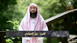 الحلقة 19 برنامج مشاهد4 الشيخ نبيل العوضي يقدم أفضل وسائل - تطوير الذات - حلقة مفيدة