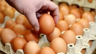 New study that an egg a day reduces heart disease misleading?