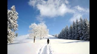 Winterlandschaften auf Schneeschuhen
