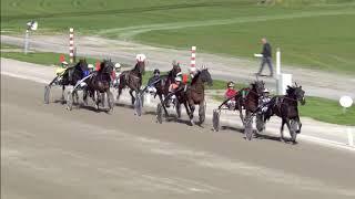 Vidéo de la course PMU PRIX VICTORIAPARKWOLVEGA.NL (TROTTEUR FRANCAIS GOLDEN CHALLENGE)