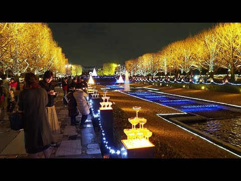 TOKYO【Christmas Lights】The lighting ceremony at Showa Memorial Park 2018. #4K #昭和記念公園 #点灯式