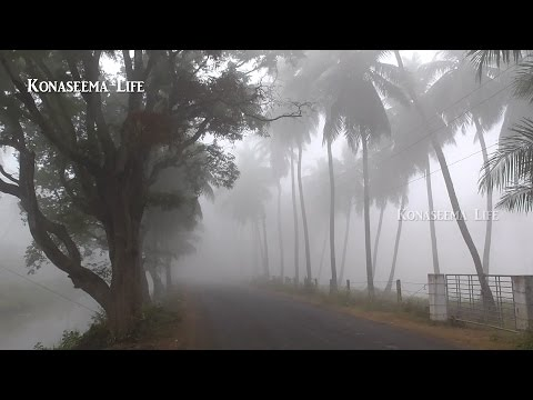 SOUTH INDIAN ANDHRA Beautiful  Winter in Konaseema Eastgodavari