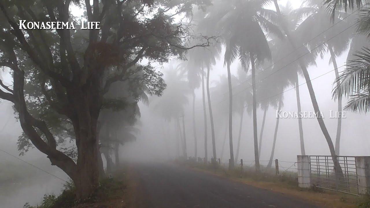 Sankranti Hd Wallpapers South Indian Andhra Beautiful Winter In Konaseema