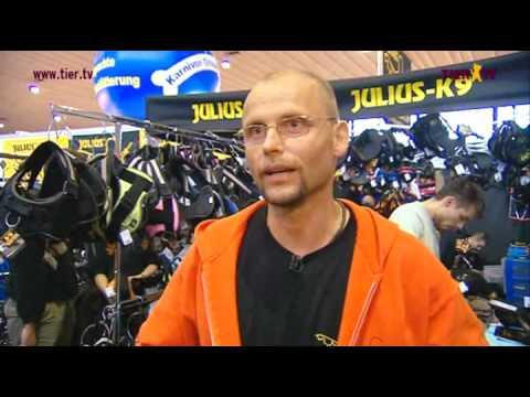 """""""Erfinder der K9®-Geschirre"""" Julius-k9®"""