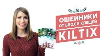 Ошейники от блох и клещей Bayer Kiltix