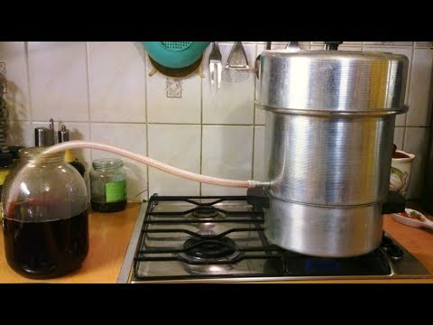 сироп из черноплодки в домашних условиях рецепт