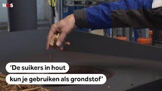 DUURZAAM: In Groningen maken ze flessen van houtsnippers