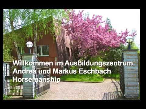 Willkommen im Ausbildungszentrum Eschbach Horsemanship