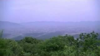 島根の高瀬山(26.6.2)