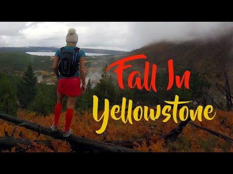 Fall In Yellowstone