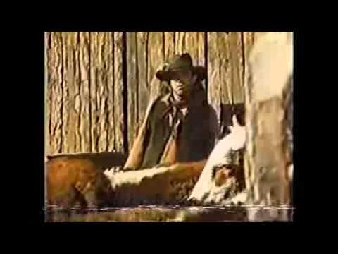 Siskel & Ebert natural born killers