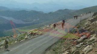 Bob Cook Memorial/Mt.Evans Hill Climb 2009