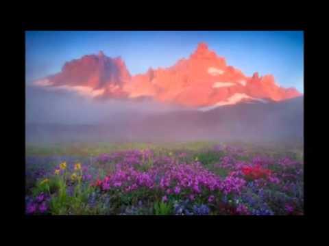 Клип Norah Jones - Sleepless Nights