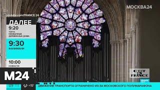 Разборка и реставрация органа собора Парижской Богоматери начнутся 3 августа - Москва 24