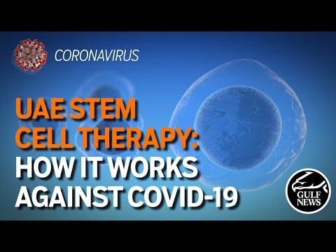 UAE Stem Cell Therapy: How it works against Covid-19 - YouTube