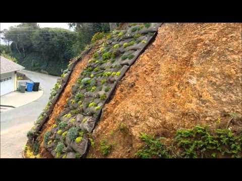 Marin Vertical Garden - Marin Landscape Designer, Architect, Installer and Contractor
